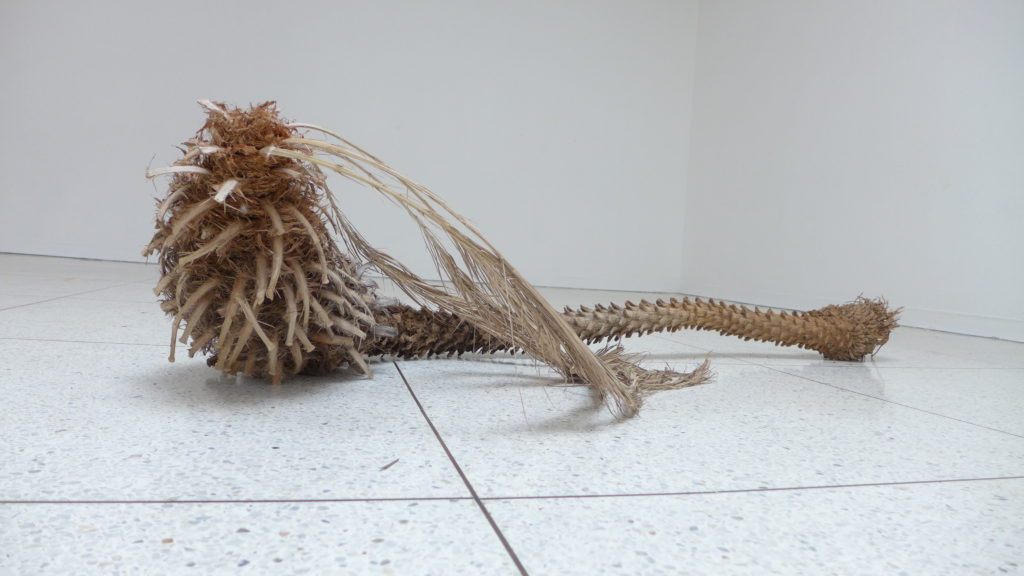 EN EL MAR LA VIDA ES MÁS SABROSA Life at the sea is tastier