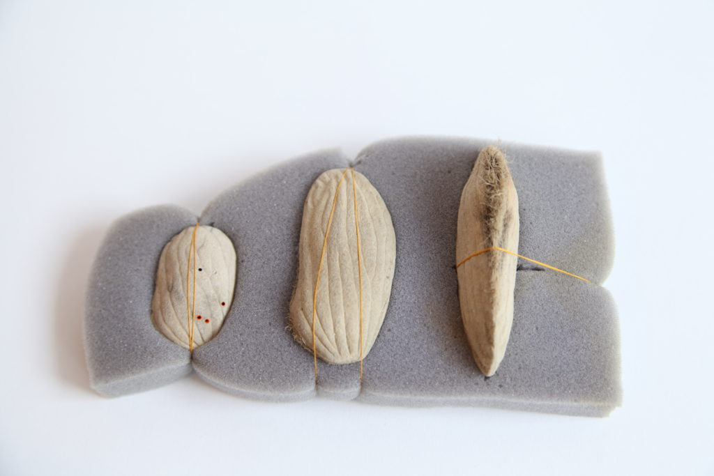 INTENTO DE VIDA Life attempt Mango seed, foam and silk 15x10x4cm 2013